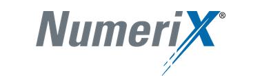 Enterprise Financial Software Licensing Case Study: Numerix